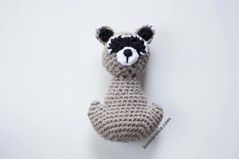 raccoonBody
